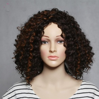 Long Curly Synthetic Hair Wigs For Women Natural Black And Dark Brown Women's Wig Pelucas Pelo Natural - intl
