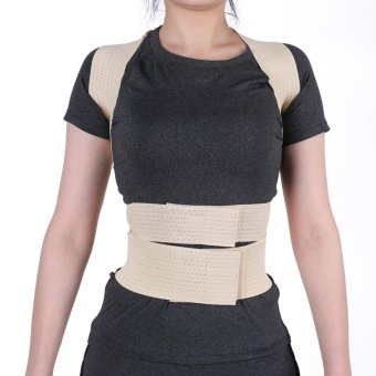 Unisex Posture Correction Waist Shoulder Chest Back Support Corrector Belt (M) - intl