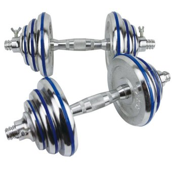 D&D Stainless Steel Dumbbell with 15kg (Silver/Blue)