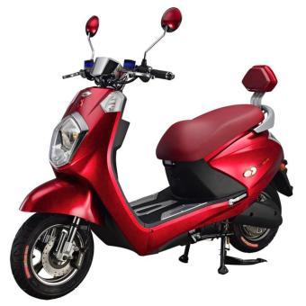 Gogo Trike Electric Bike Ebike Red Prices Philippines Price List
