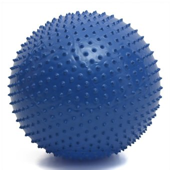 Harga Muscle Power Fitness Massage Ball with Pump 75cm (Navy Blue)
