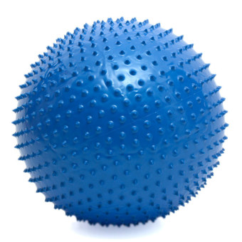 Harga Muscle Power Fitness Massage Ball with Pump 65cm (Navy Blue)