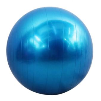 Jasmine Gym Ball (Blue) Price Philippines