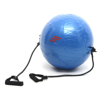 Harga Muscle Power Fitness Gym Ball with Strap 55cm (Blue)