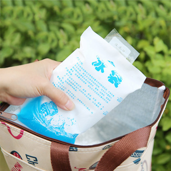 Reusable Ice Pack Gel Cooler Bag for Food Lunch Box Can Medical Storage Price Philippines
