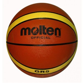 Molten GR5 Official Basketball (Brown) FREE PIN