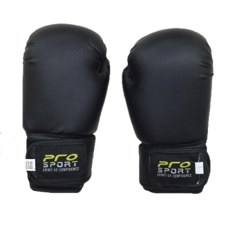 Pro Sports Boxing Gloves 12oz