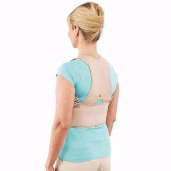 Royal Posture Back Support S/M Price Philippines