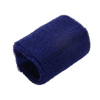 S & F Blue GYM Wristband Tennis Squash Badminton - INTL