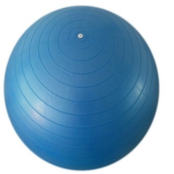 S & F Fitness Ball: Blue, 29.5in/75cm Diameter, Includes 1 Ball +1 Pump + 1 Page Instruction Chart. No instructional DVD. (Exercise Gym Swiss Stability Ball) (Intl)
