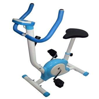Stationary Bike (Blue)