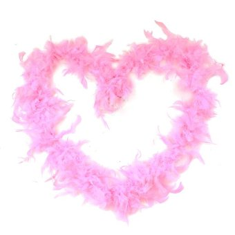 Blue lans Feather Decor Pink - picture 2