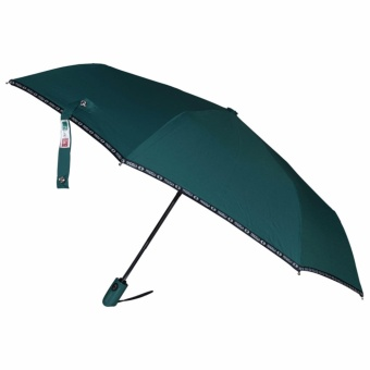 Fibrella Umbrella Dual Automatic F00408(BlueGreen)