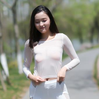 Gauze transparent female spring and summer long-sleeved Top base shirt (Black-ice silk-short-sleeved)