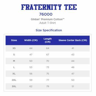 GILDAN Fraternity Tee (Tau Gamma Phi) - 2