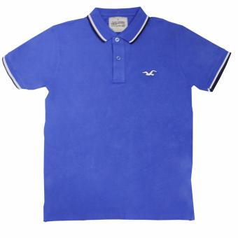 Hollister-1601 Men's Polo Shirt(Royal Blue) Price Philippines