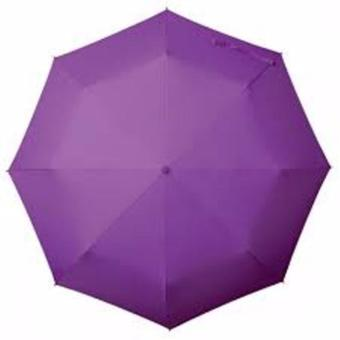 ZMB Foldable Umbrella (Purple) Price Philippines