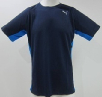 Puma PE Running S/S Tee (Peacoat/Electric Blue Lemonade) Price Philippines