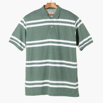 Maxwear Mens Striped Polo Shirt (Green)