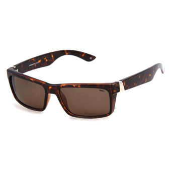 Mossimo 9479 PZM Fashion Eyewear (Brown)