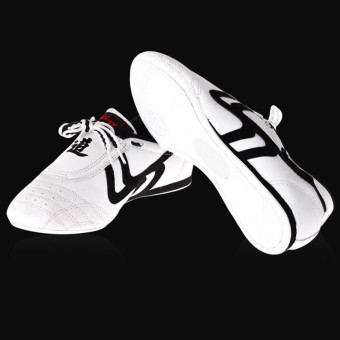 New Unisex Taekwondo Kung Fu Karate Tai Chi Training Shoes Footwear Sneakers - intl