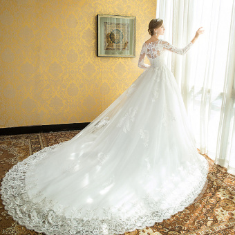 Princess New style bride lace dreamy wedding veil dress (Tail Section)