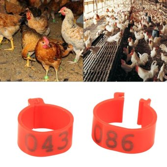 100PCS/Bag 16MM 001-100 Numbered Plastic Poultry Chickens DucksGoose Leg Bands Rings(Yellow) - intl
