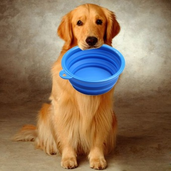 1Pcs Lightweight Folding Bowl For Dogs Rubber Silicone CollapsibleBowl Dish For Dog Feeding Food Drinking Water Plate Pet Bowls -intl