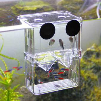 4 in1 Aquarium Fish Fry Breeding Hatchery Incubator Isolation Box Tank Shrimp Small - intl - 2