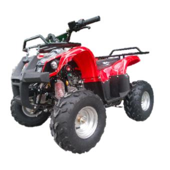 ATV 110CC AUTOMATIC WITH REVERSE BY MARIOLAN ANIGOLD MOTORS (RED) Price Philippines