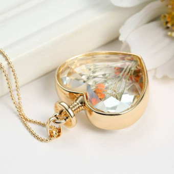 BolehDeals Fashion Clear Glass Heart Floating Dried Flower Locket Gold Chain Necklace