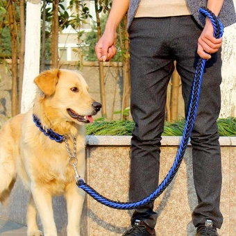 Dog Collar Strong Traction Rope Leashes Traction Rope Collar SetNylon Large Pet Rope Product (Blue & Black) - intl