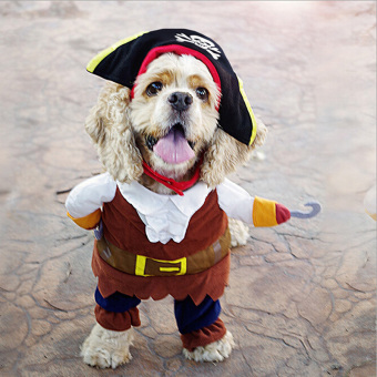Hanyu Halloween Pirate Style Dog Costumes With Skull Hat Funny DogClothing L Multicolor - intl