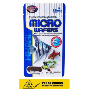 Hikari Micro Wafers Tetras and Small Fish Food (20g) Sinking PelletJapan Made Fish Food Price Philippines