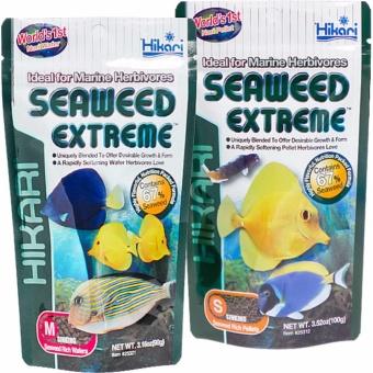 Hikari Seaweed Extreme For Marine Herbivores (100g) Small SinkingPellet Japan Made Fish Food - 3