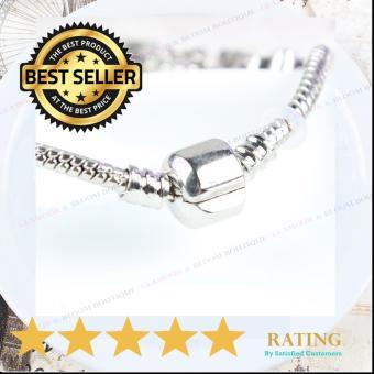 Homhul Authentic - 2017 DIY Bead Bracelet,High Quality Fashion Bracelet Charms (Pandora Copy) HML 07 - 4