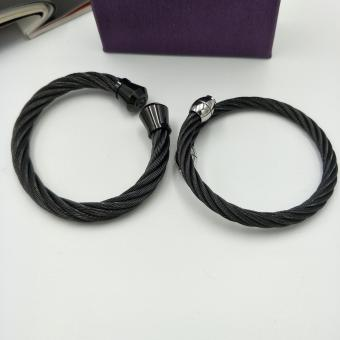 Fantasy Stainless Steel Couple Spiral Bangles AC10023 Price Philippines