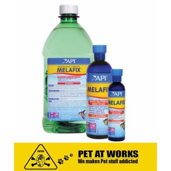 API MELAFIX® Treats Bacterial Infection (237ml) for Fresh Water Aquarium, Fish Tank and Marine Tank Price Philippines