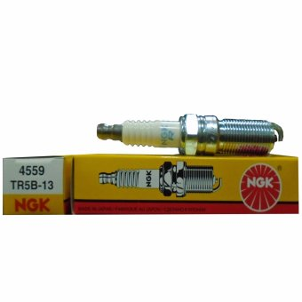 NGK TR5B-13 Spark Plug for FORD Fiesta and Focus 1.6 2010-2013 Set of 4