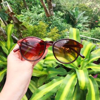Oxford Sunglasses Brown Frame Brown Gradient Lens Sunnies Price Philippines
