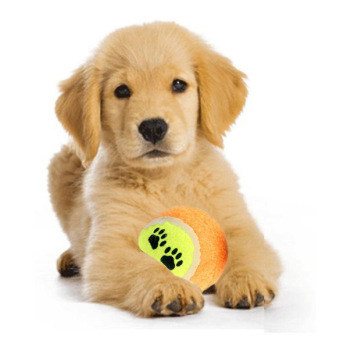 PAlight Pet Dog Tennis Balls Run Fetch Throw Chew Toy - intl