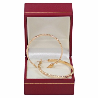 Persian Princess Maha Hoop Earrings FREE Gift Box