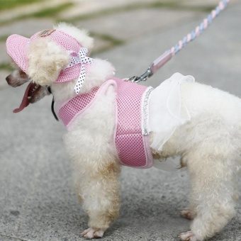 Pet Hat With Ear Holes Bowknot Mesh Breathable Dog Hiking Pets Products(Size:S) - intl