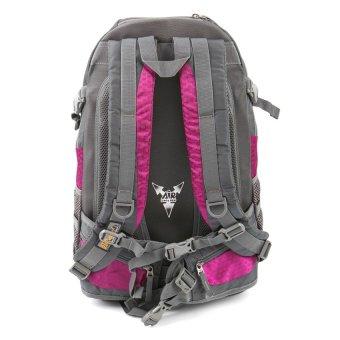 Racini 40-372 Mountaineering Backpack (Dark Gray/ Violet) - 2