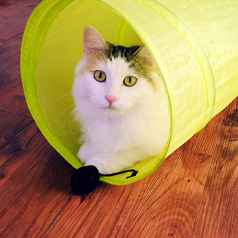 Tada Polyester can be fold tent cat toys & Philippines | Tada Polyester can be fold tent cat toys Compare Prices