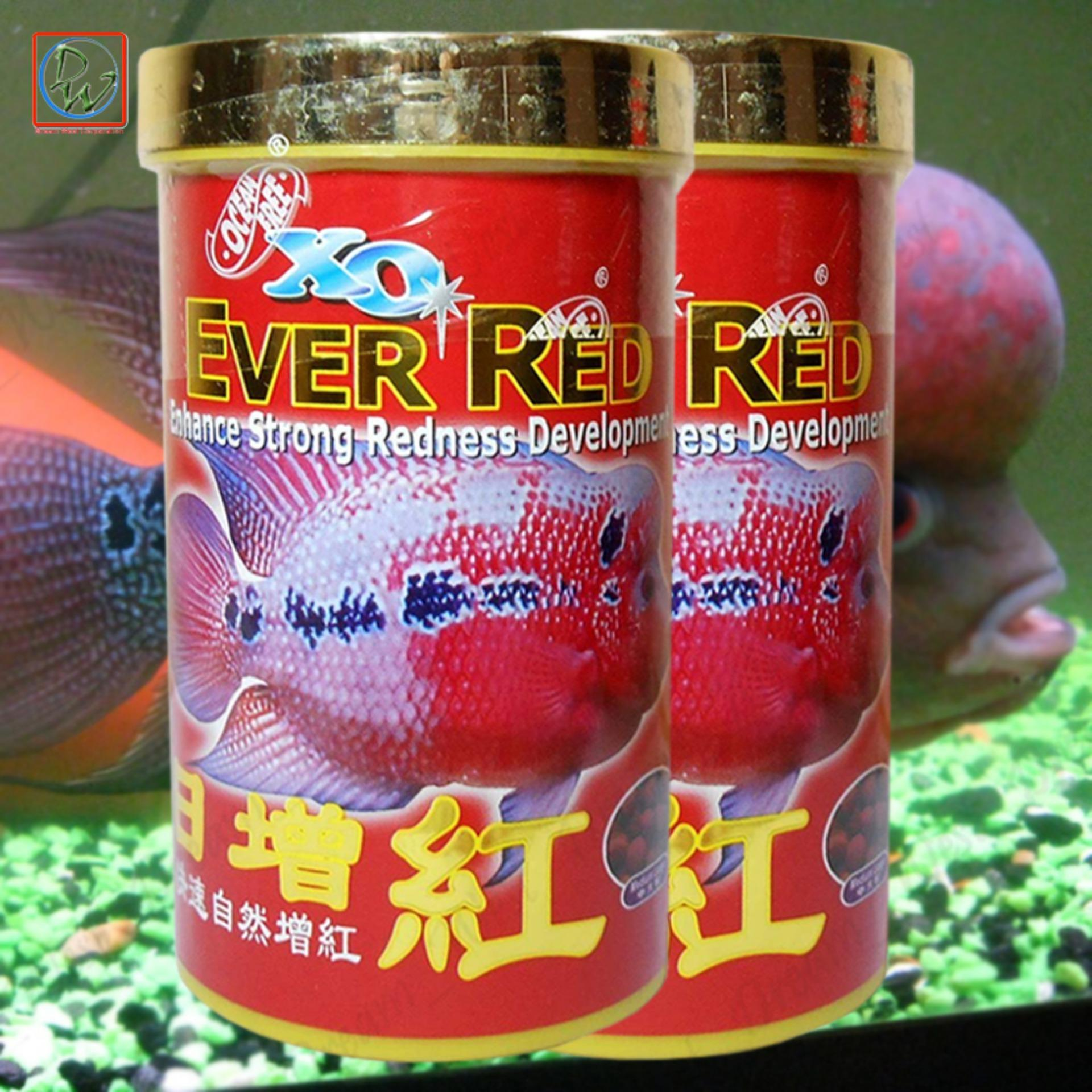 Philippines | XO Ever Red Fish Pellet Aquarium Fish Food 280ml/100g ...